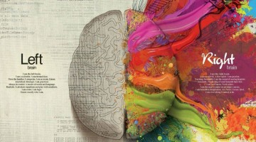 brain-creative-artwork