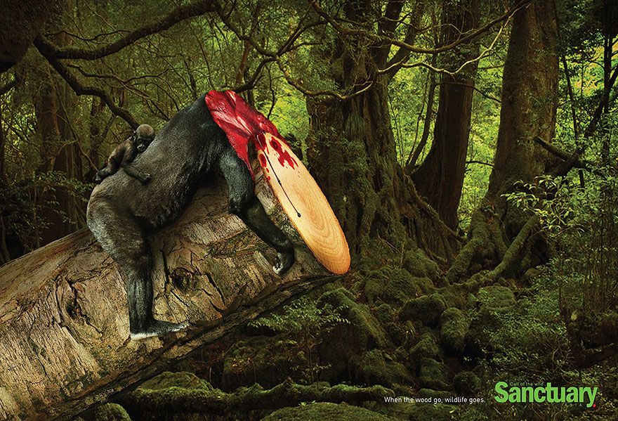 animal-rights-social-ads
