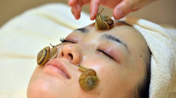 escargot-treatment-in-Japan