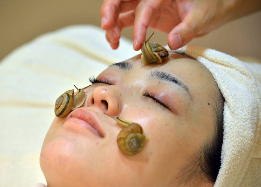 escargot-treatment-in-Japan
