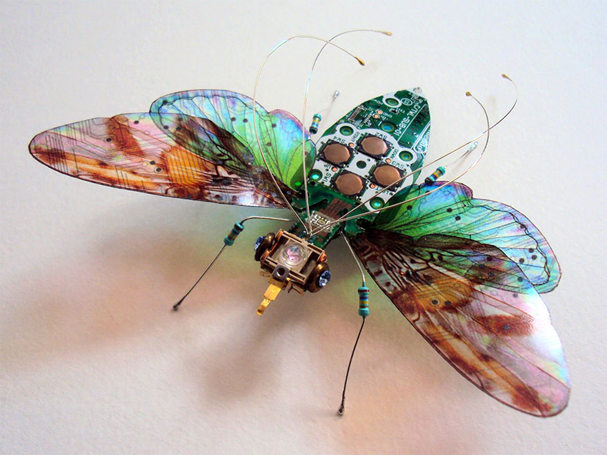 circuit-board-winged-insects-julie-alice-chappell-1