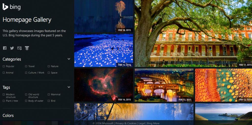 Bing-Homepage-Gallery-Most-Beautiful-Wallpapers-2