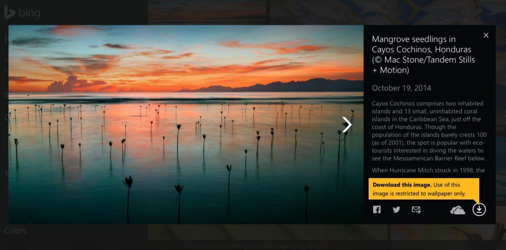 Bing-Homepage-Gallery-Most-Beautiful-Wallpapers-4