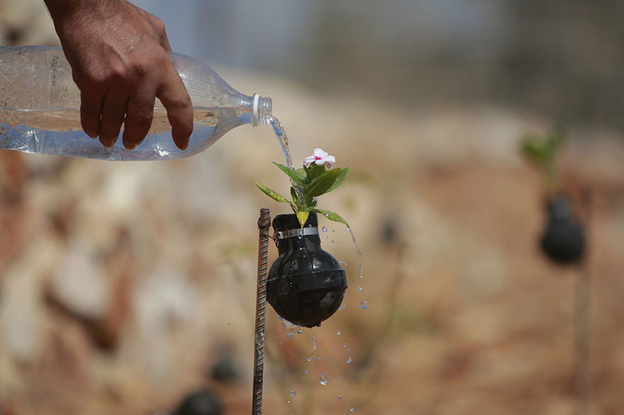 Palestinian-Woman-Plants-Flowers-In-Israeli-Tear-Gas-Grenades-4