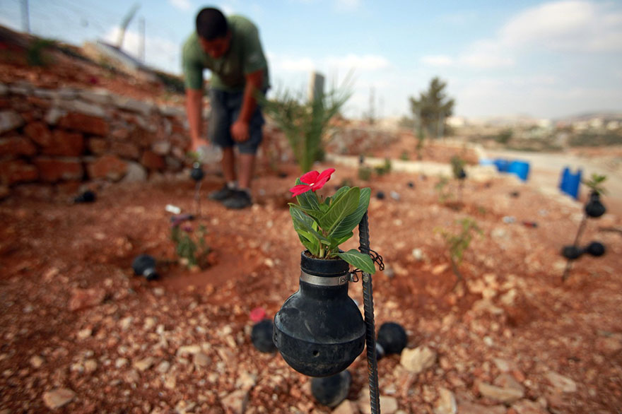 Palestinian-Woman-Plants-Flowers-In-Israeli-Tear-Gas-Grenades-6