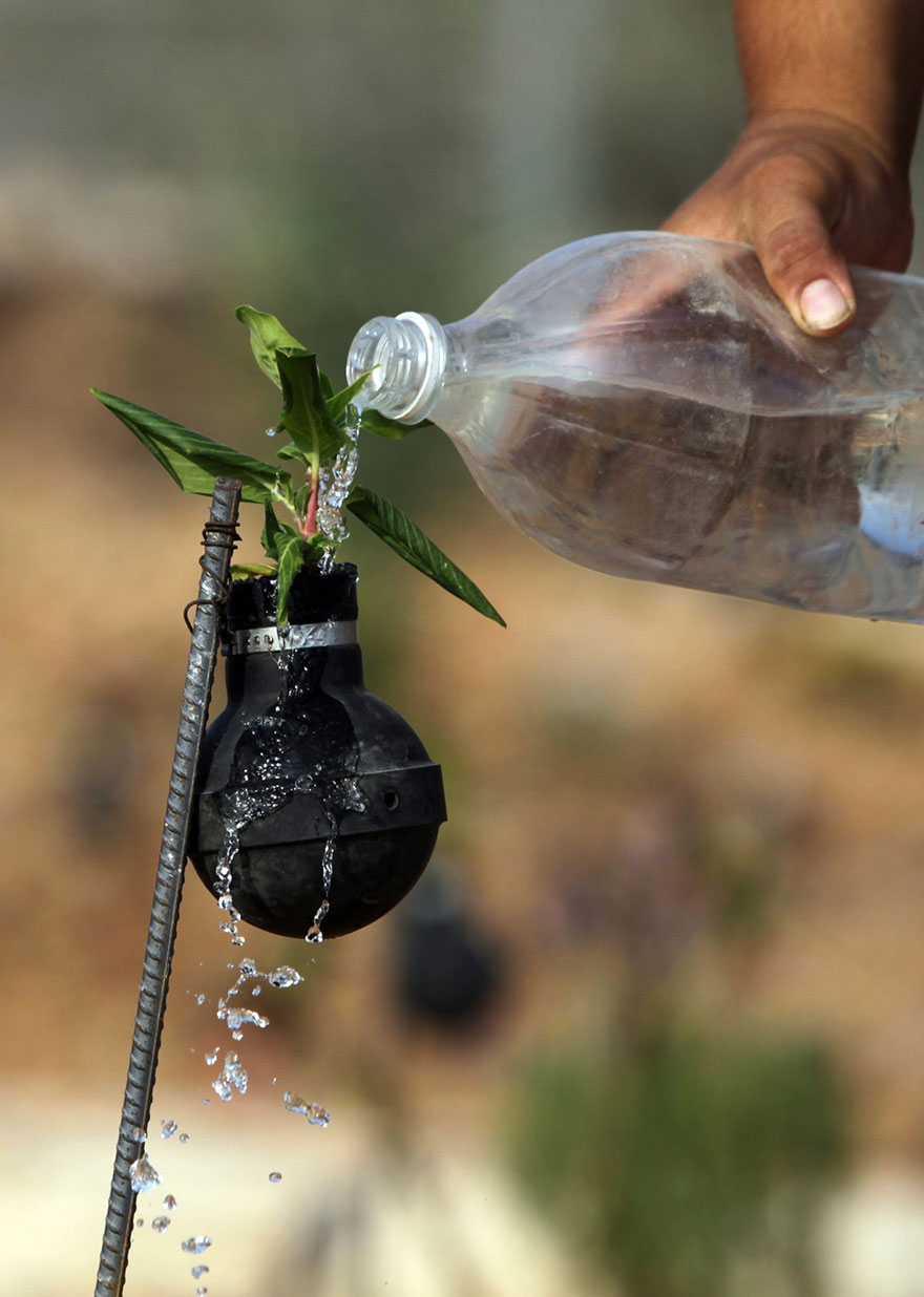 Palestinian-Woman-Plants-Flowers-In-Israeli-Tear-Gas-Grenades-7