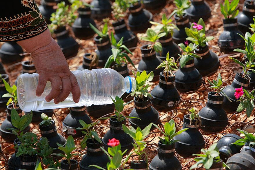 Palestinian-Woman-Plants-Flowers-In-Israeli-Tear-Gas-Grenades-9