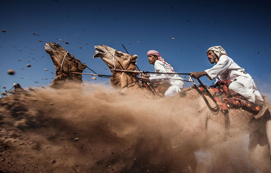 Winners-Of-The-2015-National-Geographic-Traveler-Photo-Contest-Camel-Ardah