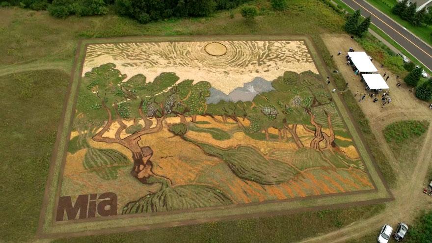 land-art-painting-field-van-gogh-olive-trees-stan-herd-earthwork