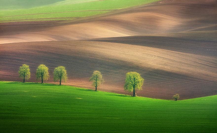 Beauty-Of-Moravian-Fields-In-The-Chech-Republic (1)