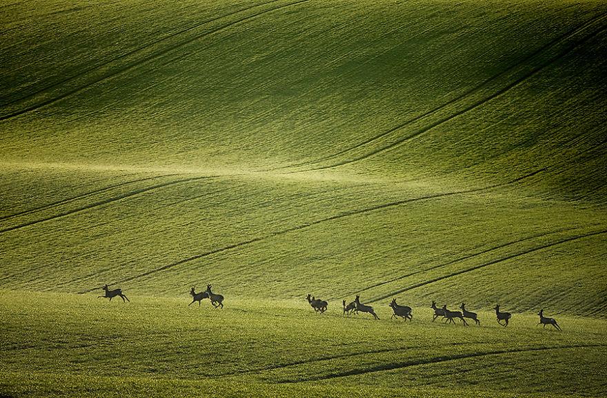 Beauty-Of-Moravian-Fields-In-The-Chech-Republic (4)