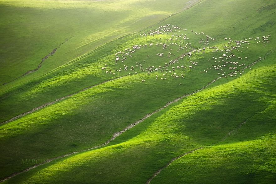 Beauty-Of-Moravian-Fields-In-The-Chech-Republic (7)