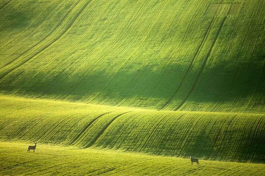 Beauty-Of-Moravian-Fields-In-The-Chech-Republic (8)