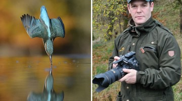 perfect-kingfisher-dive-photo-wildlife-photography-alan-mcfayden-after-6-years-and-720,000-attempts