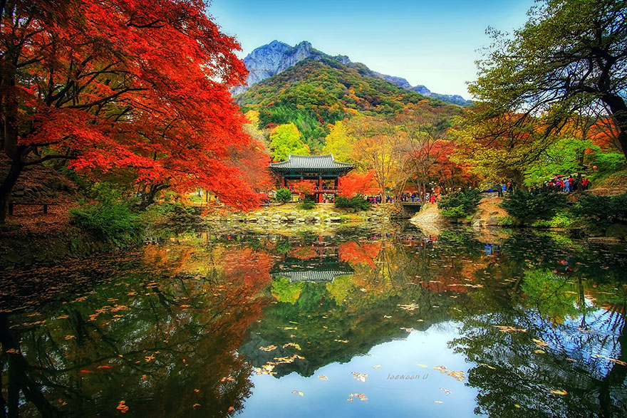 reflection-landscape-capture-beauty-of-south-korea-photography-jaewoon-u (7)