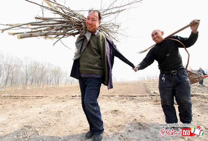 blind-man-amputee-plant-10,000-trees-china (11)
