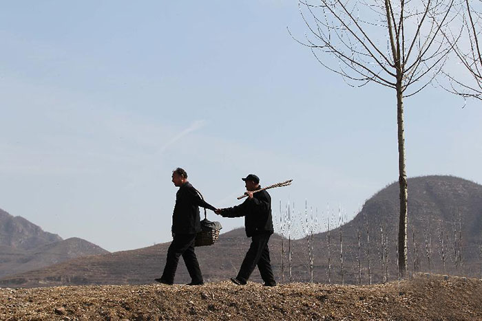 blind-man-amputee-plant-10,000-trees-china (2)