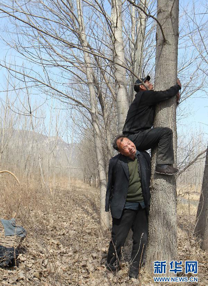 blind-man-amputee-plant-10,000-trees-china (4)