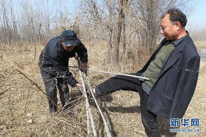 blind-man-amputee-plant-10,000-trees-china (5)