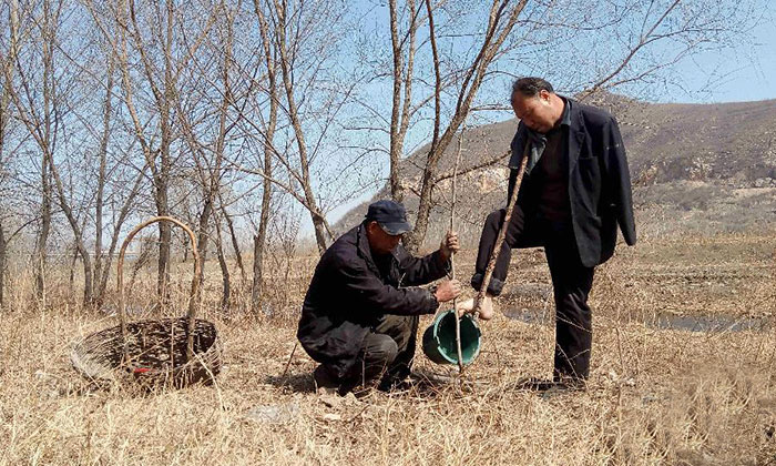 blind-man-amputee-plant-10,000-trees-china (6)