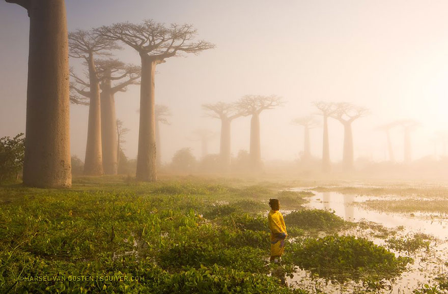 national-geographic-top-photo-of-the-day-2015 (12)