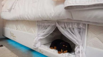 pet-bed-inside-mattress-colchao-inteligente-postural