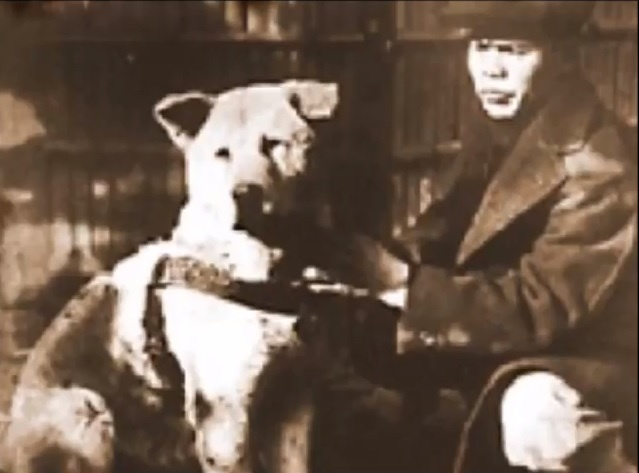 Hachiko – A Dog`s Tale (12)