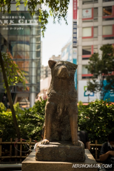 Hachiko – A Dog`s Tale (7)
