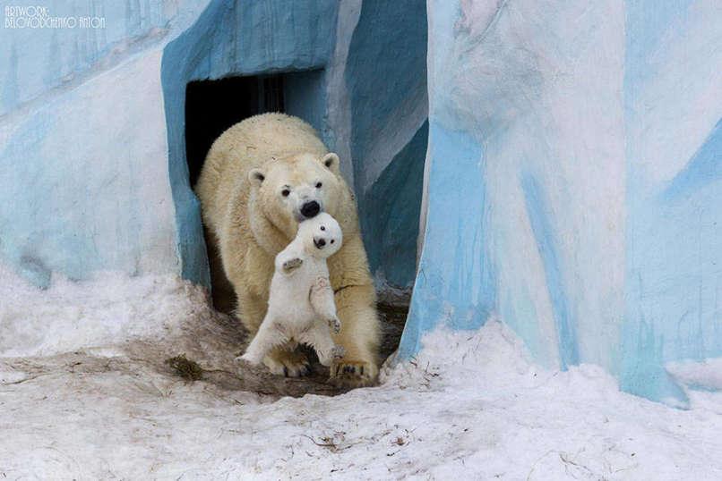 Photos-Prove-Parental-Love-Universal (4)