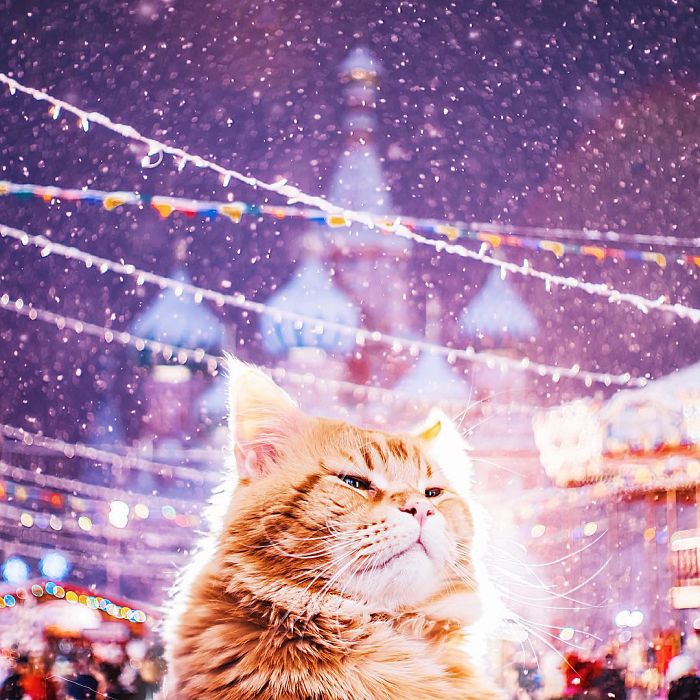 moscow-city-looked-like-a-fairytale-during-orthodox-christmas-5