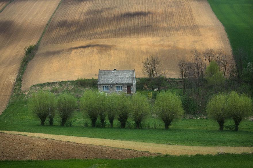 przemysław-kruk-photographing-polands-fields-which-look-like-sea-waves (10)