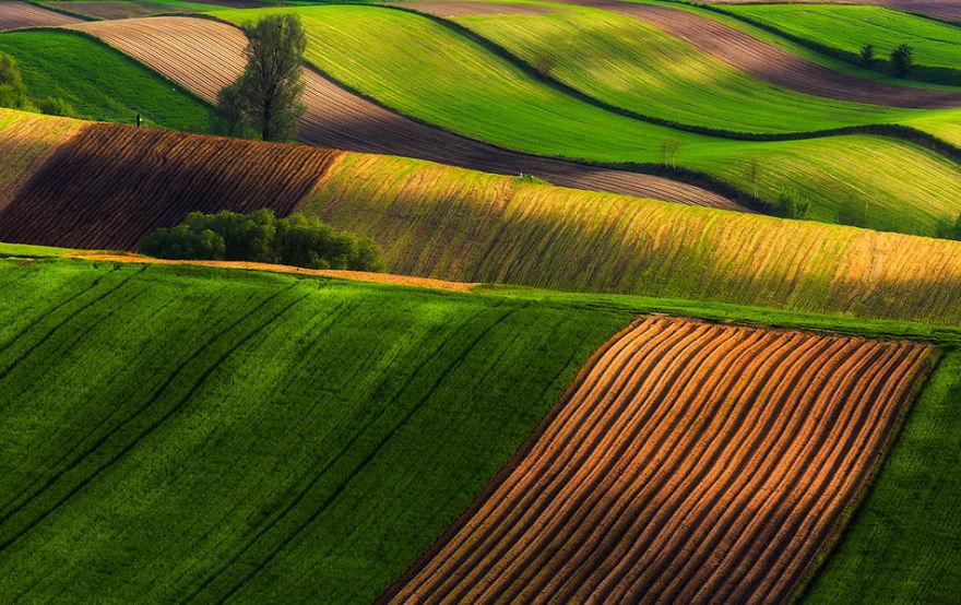 przemysław-kruk-photographing-polands-fields-which-look-like-sea-waves (2)
