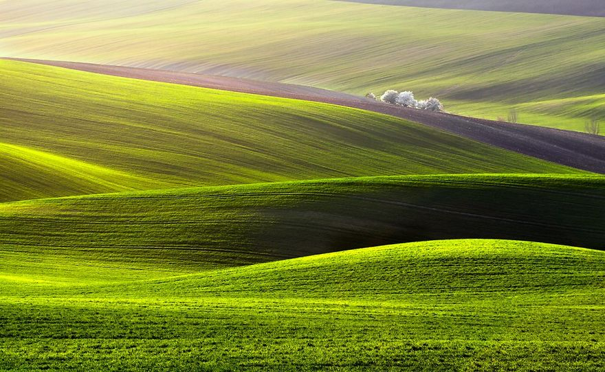 przemysław-kruk-photographing-polands-fields-which-look-like-sea-waves (3)