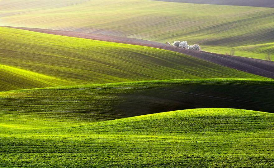 przemysław-kruk-photographing-polands-fields-which-look-like-sea-waves (3)
