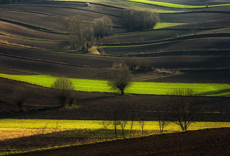przemysław-kruk-photographing-polands-fields-which-look-like-sea-waves (5)