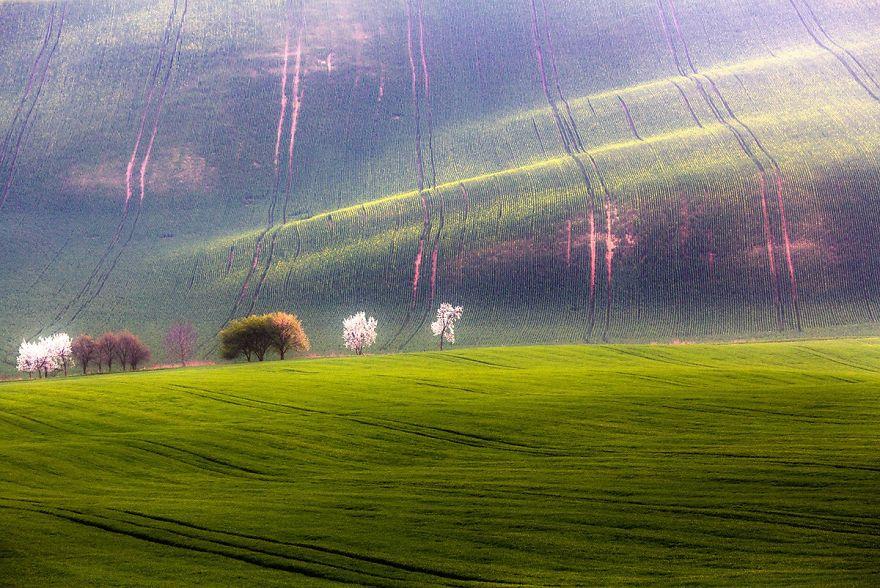 przemysław-kruk-photographing-polands-fields-which-look-like-sea-waves (6)