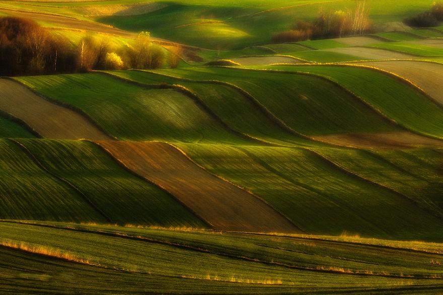 przemysław-kruk-photographing-polands-fields-which-look-like-sea-waves (9)