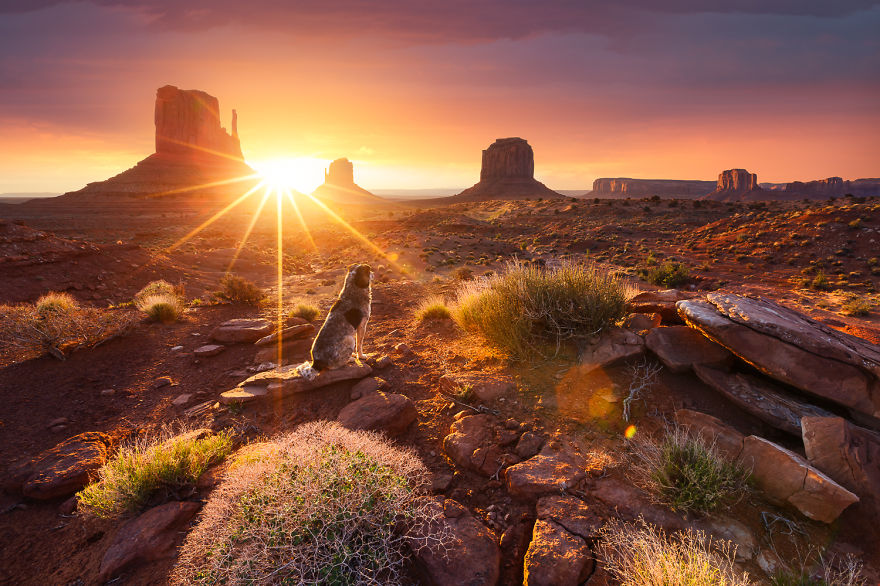 French-landscape-photographer-travelling-the-world-capturing landscapes-cityscapes-sun (13)