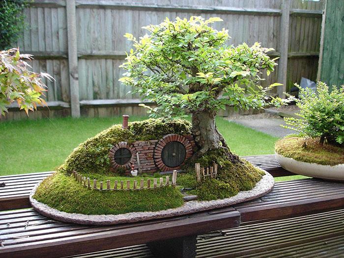 amazing-bonsai-trees-ever (15)