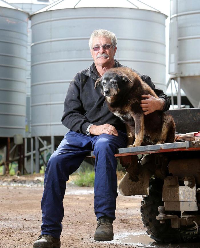 worlds-oldest-dog-dies-age-30-kelpie-maggie (3)